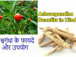 Ashwagandha ke fayde, Ashwagandha benefits in hindi