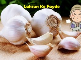 lahsun ke fayde garlic benefits in hindi