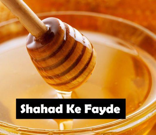 shahad ke fayde