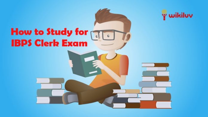 How to Study for IBPS Clerk Exam